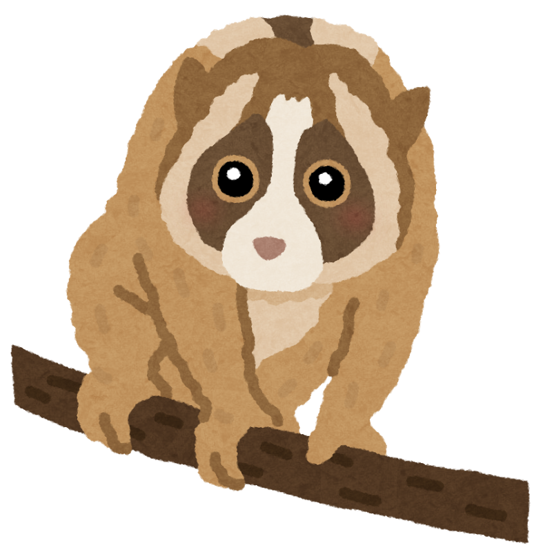 animal_slowloris